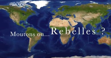 moutons-rebelles