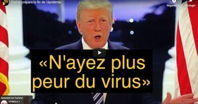 fin-pandemie