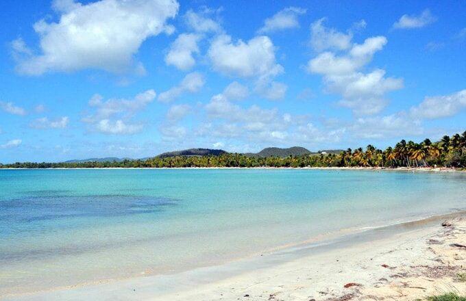 Salines beach in Martinique 2